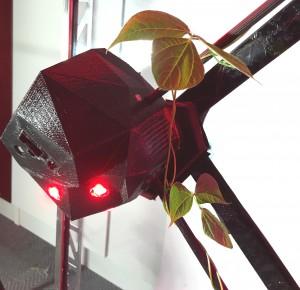 robotandplant